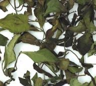 gong-mei-white-tea-dry-leaves